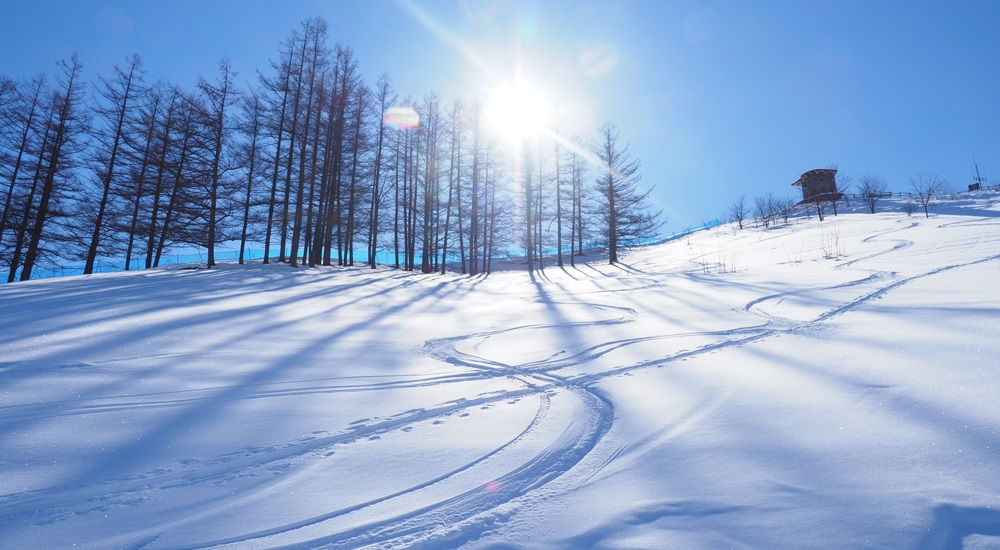 北海道 スキー